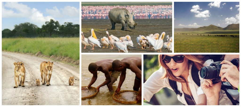 Büyük Göçler Tanzanya Yurt Dışı Fotoğraf Turları