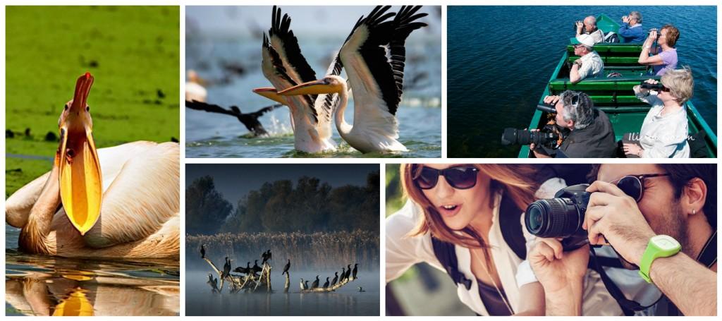Danube Delta Yurt Dışı Fotoğraf Turu