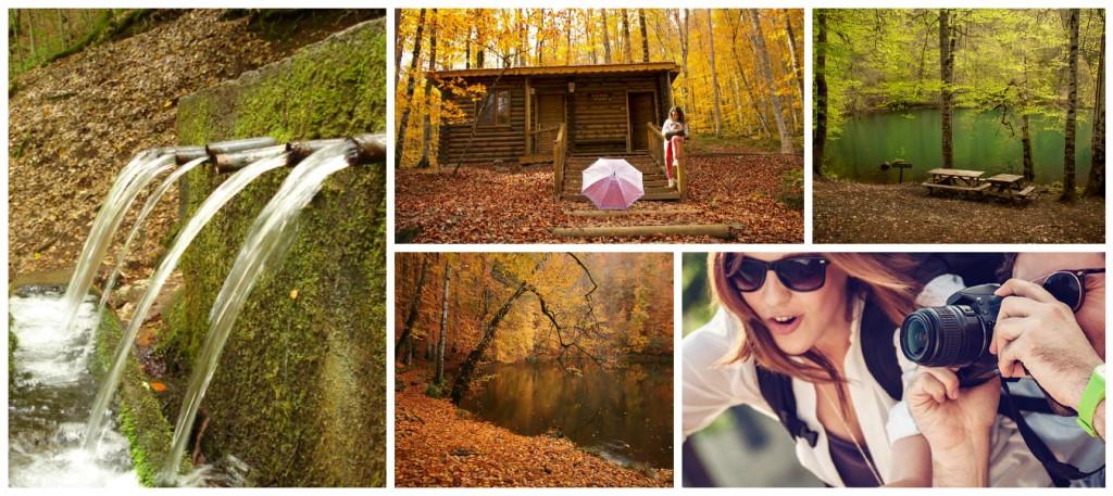 Yedigöller Fotoğraf Turları
